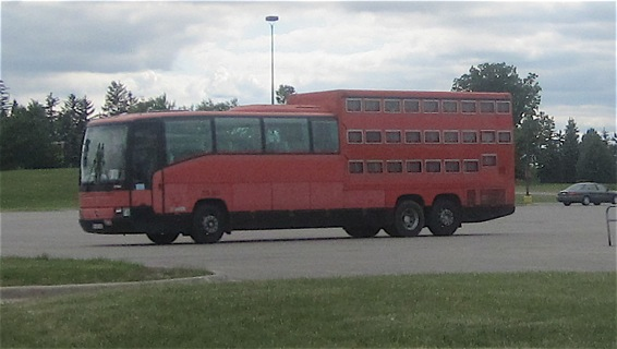 found the korrektiv kollektiv s new orleans tour bus traveling homeschool. Black Bedroom Furniture Sets. Home Design Ideas