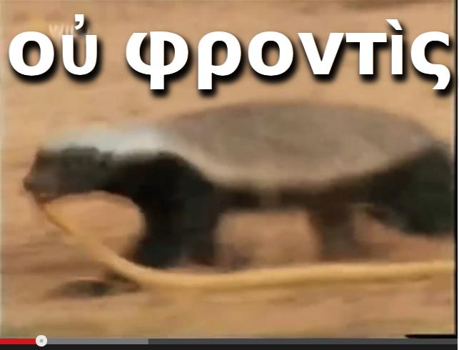 οὐ φροντὶς*