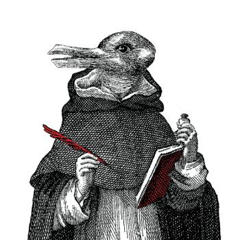 brother rabbit duck