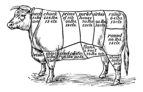 beef-diagram